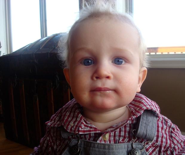 Landon, the cutie patootie